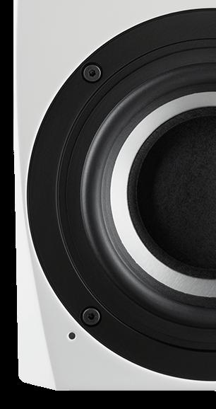 Tieftöner der Schanks Audio Prisma 2